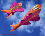 Premier Kites Mega Flying Fish Warm