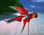 Premier Kites Papegaai windspel