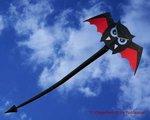 CIM Flying Wings VampDevil Quad