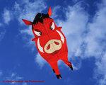 CIM Flying Buddy Zwijn