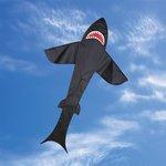 Premier Kites Black Shark 7 ft