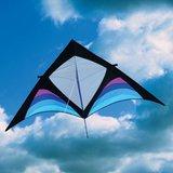 Into the wind Dan Leigh XFS Delta Kite_21