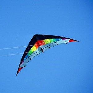 Elliot Jet Stream Strong Regenboog-zwart