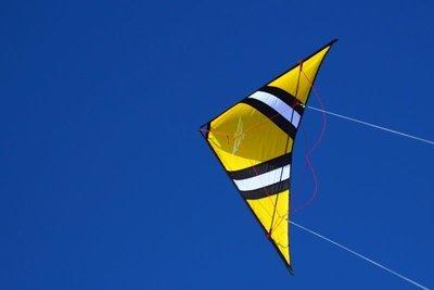 Cross Kites Speedwing X1 DEMO