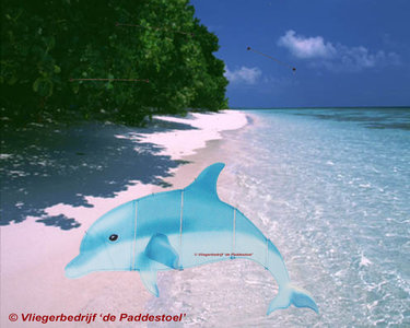 HQ Ocean Mobile Dolphin