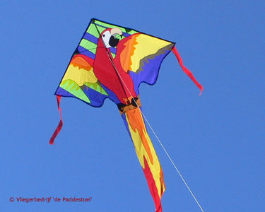 Premier Kites Large Easy Flyer Macaw