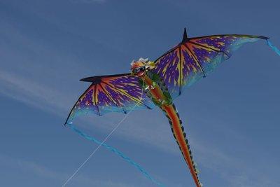 WindNSun 3D Dragon Vlieger
