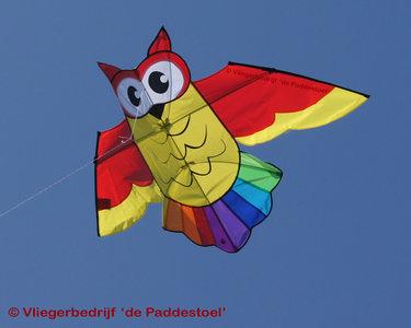 HQ Owl Kite