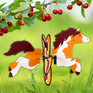 Cim Pony windspel