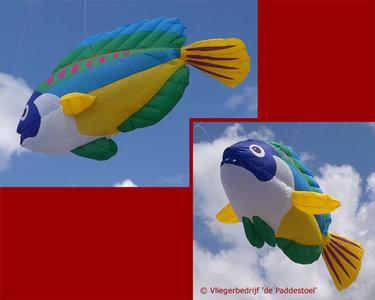 Premier Kites Peacock Wrasse Lijnversiering