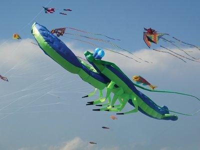 Premier Kites Giant Lobster - Blue