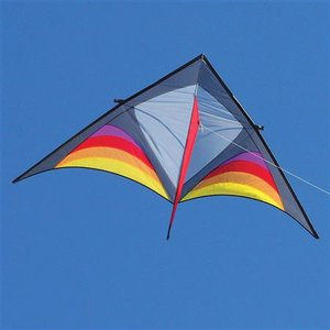 Into the wind Dan Leigh XFS Delta Kite