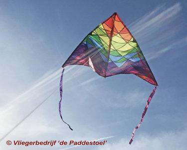 Premier Kites Delta 190 Rainbow