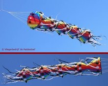 Premier Kites Myriapod Lijnversiering