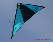 De Paddestoel Speedwing Proton