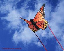 HQ Butterfly Monarch 'S'