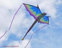 X-Kites 3D Draak