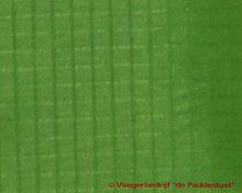 Spinnaker Nylon Licht Groen per meter