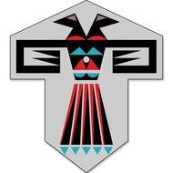 Premier Kites Eagle Of Paradox Sode